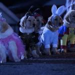 Disney Spooky Buddies Blu-Ray Halloween Giveaway