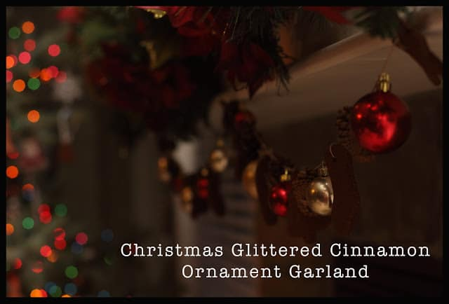 Cinnamon Ornament Garland