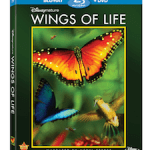 Disneynature's Wings of Life Prize Pack Giveaway!