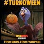 Free Birds Free Pumpkin Carving Templates