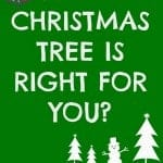 How to find the Perfect Christmas tree!