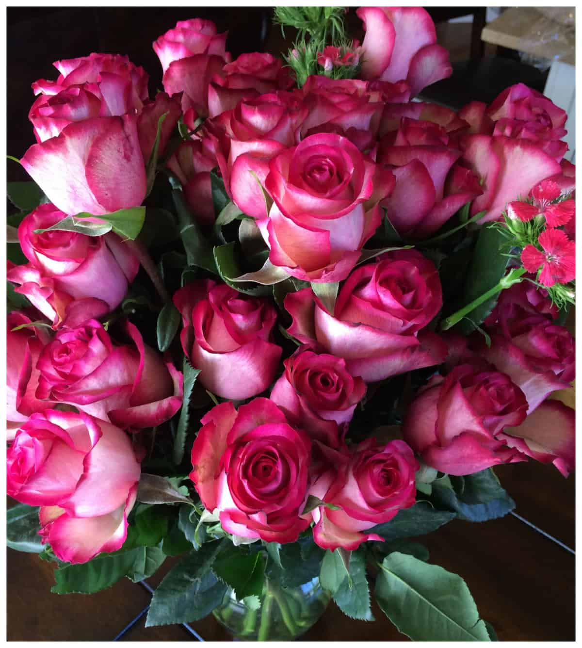 The Bouqs pany Desperado bouquet A Sparkle of Genius