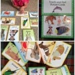 Books for Babies and toddlers from DK