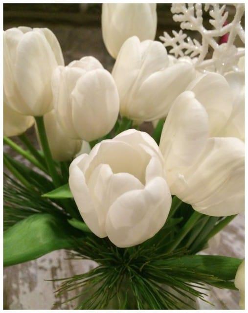 TulipsCloseup