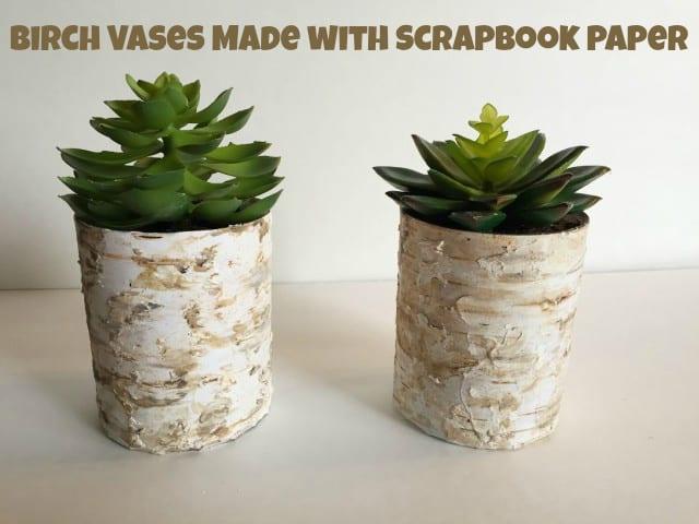 Birch Vase with Scrapbook Paper