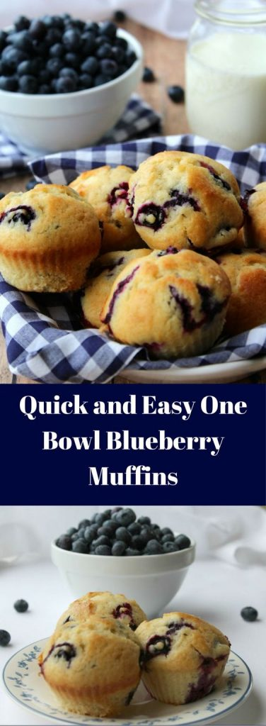 One Bowl Blueberry Muffins