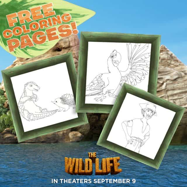 The Wild Life Activity Sheet