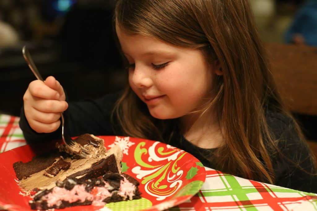 Baskin Robbins Ganache Ice Cream Cake