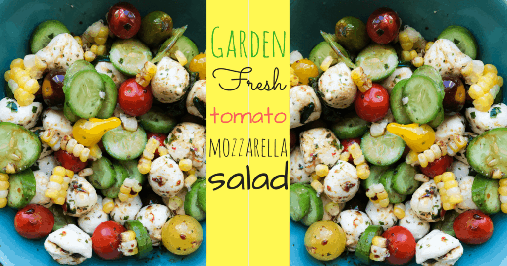 A bunch of different types of food, with Salad and Mozzarella