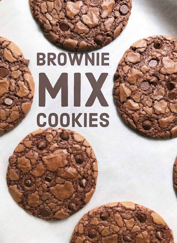 Easy Brownie Mix Chocolate Chocolate Chip Cookies