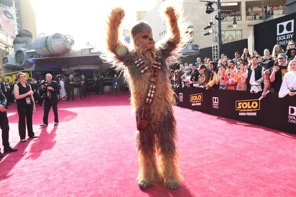 A crowd of people watching Chewbacca