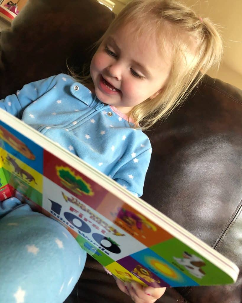 toddler reading beginners bible