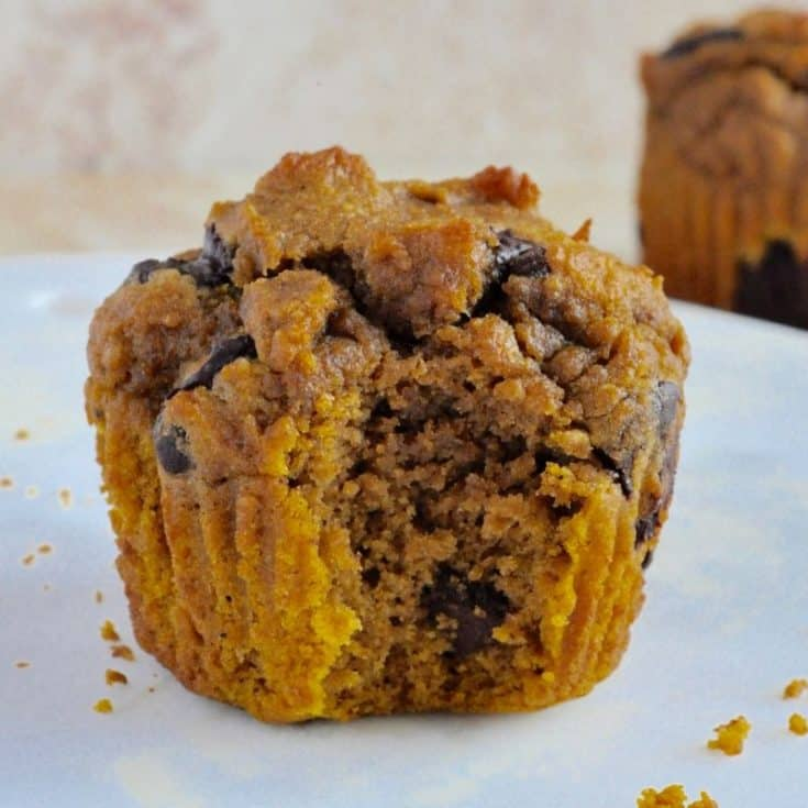 Healthy Pumpkin Chocolate Chip Muffins {sweetened with applesauce}