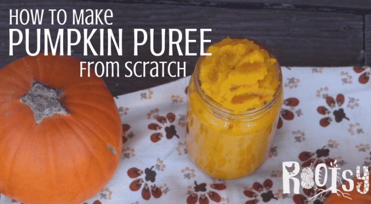 How to Make Pumpkin Puree from Scratch